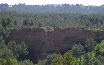 Monte de Utilidad Pública «Los Cerros»