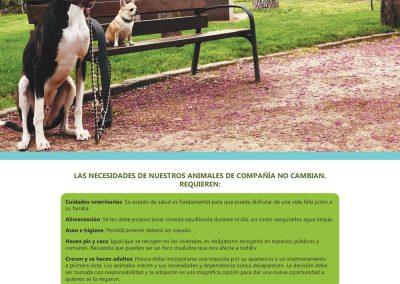 campaña_tenencia_responsable_vacaciones